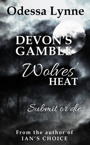 Devon's Gamble cover image