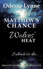 Matthew's Chance - Wolves' Heat #4