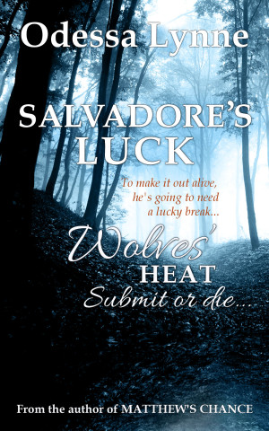 Salvadore's Luck (Wolves' Heat book 5)