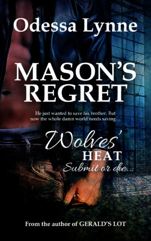 An alternate book cover for Mason's Regret